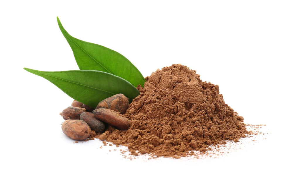 CACAO POWDER RAW ORGANIC