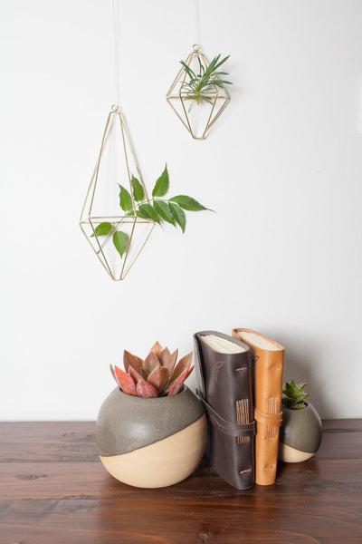 Brass Wall Planter - Large