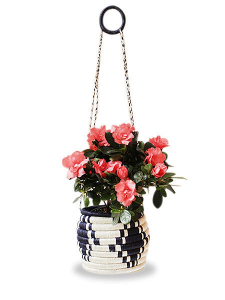 Home Goods - Hanging Flower Pot - Navy & White