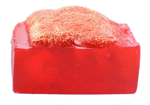 Luffa Soap Bar (4.5oz) - Verbena and Berries - Exfoliating Soap, Handmade Glycerin soap