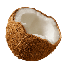 Coconut - used to extract Organic Coconut Fractionated Oil, the primary ingredient in Lush Locks Nourishing Organic Hair Oil