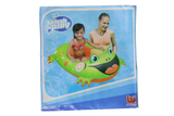 Swimming Float (Assorted Designs)