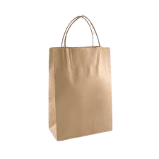 Food Bag with Handle (Pack of 100)