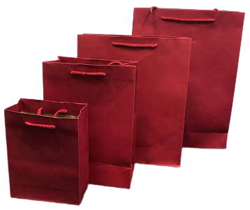 Plain Paper Bags (Minimum of 6 Pieces Per Color)