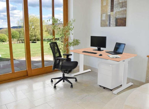 Move! Electric Height Adjustable Desk, White Frame, Home Office Setting