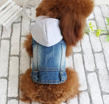 Load image into Gallery viewer, Embroidered Dog Jacket