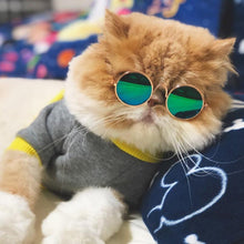 Load image into Gallery viewer, Super Cute Furbaby Glasses