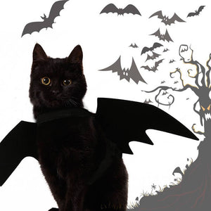 Cute Halloween Cat Bat Wings
