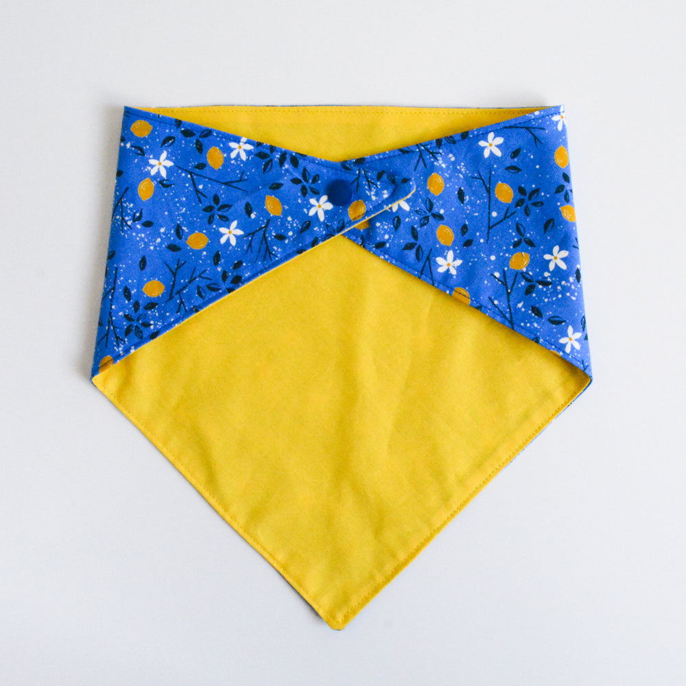 Doggie bandana (lemon)