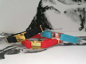 Pipps by Pippa Assorted Collars Suede