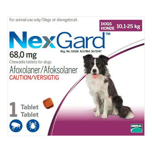 NexGard Tick and Flea Treament