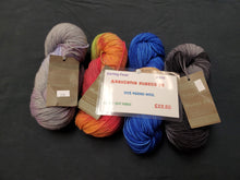 Load image into Gallery viewer, Knitting Fever Araucania Huasco DK