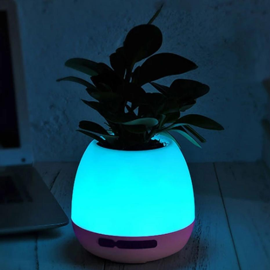 modern flower pot with lights