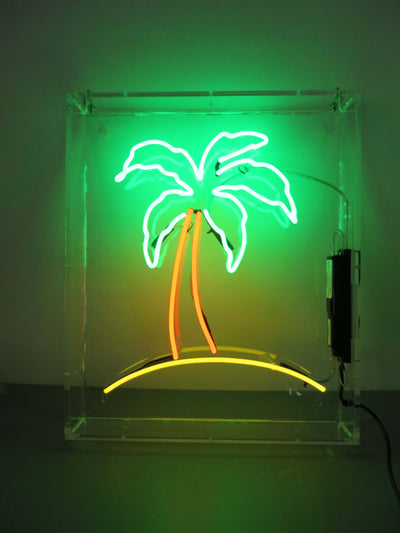 Palm Tree (for hire)