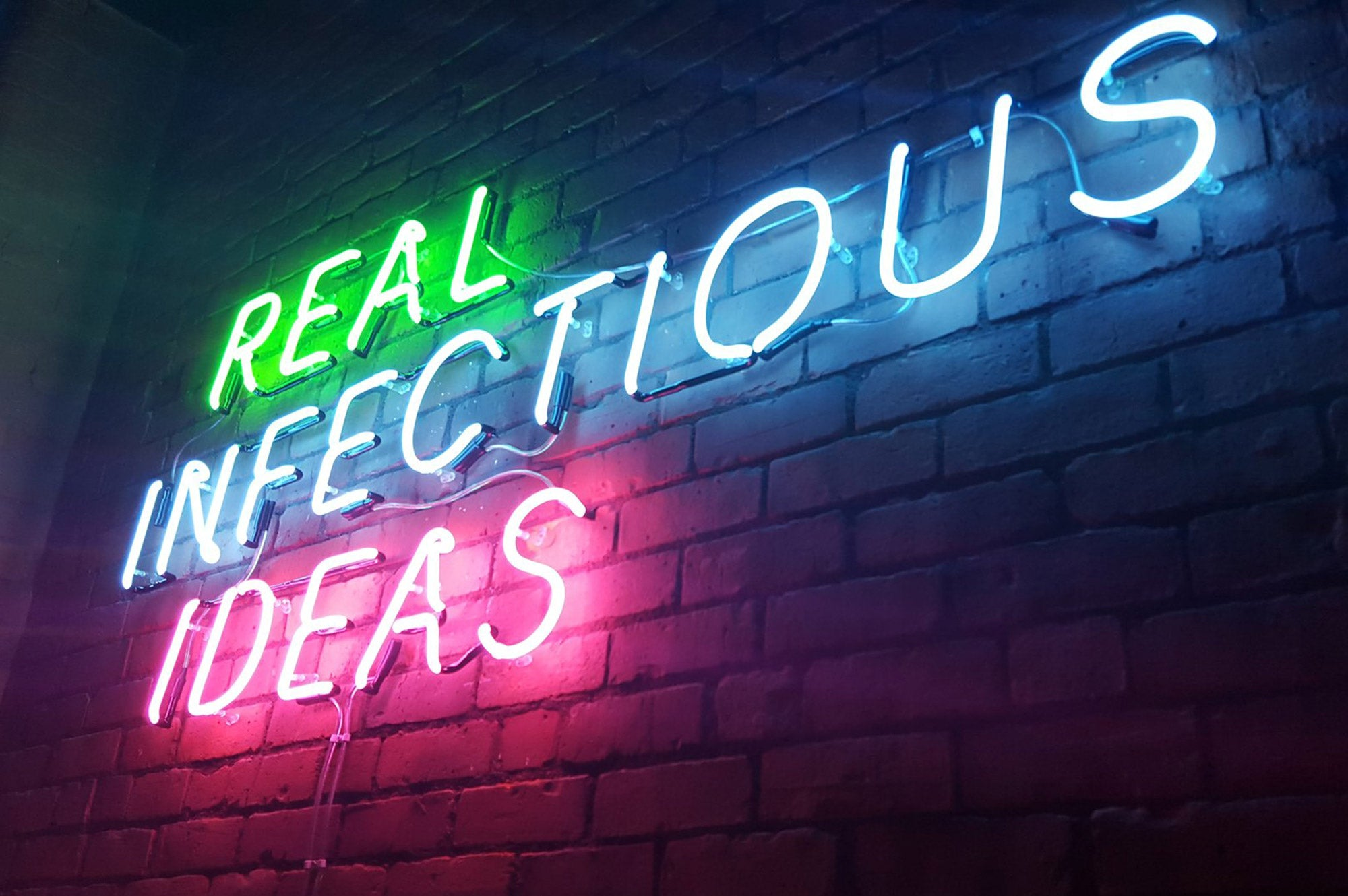 Real Infectious Ideas
