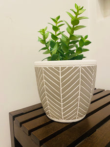 "5.5"" Chevron Stripe Pot"