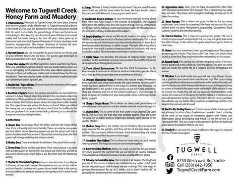 Tugwell Creek Inside of Flyer