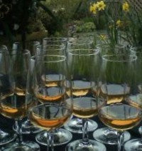 Glasses of Melomel Mead from Tugwell Creek Meadery in Sooke, BC