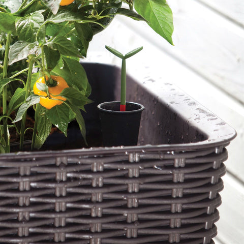Image of Modern Dark Brown Resin Wicker Raised Garden Bed Planter with Water Indicator