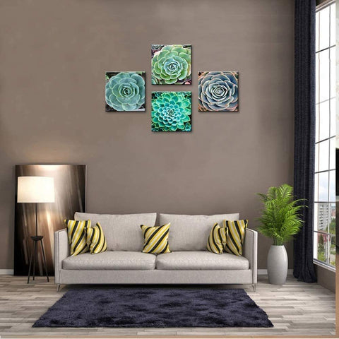Image of Green Agave Succulents Decor