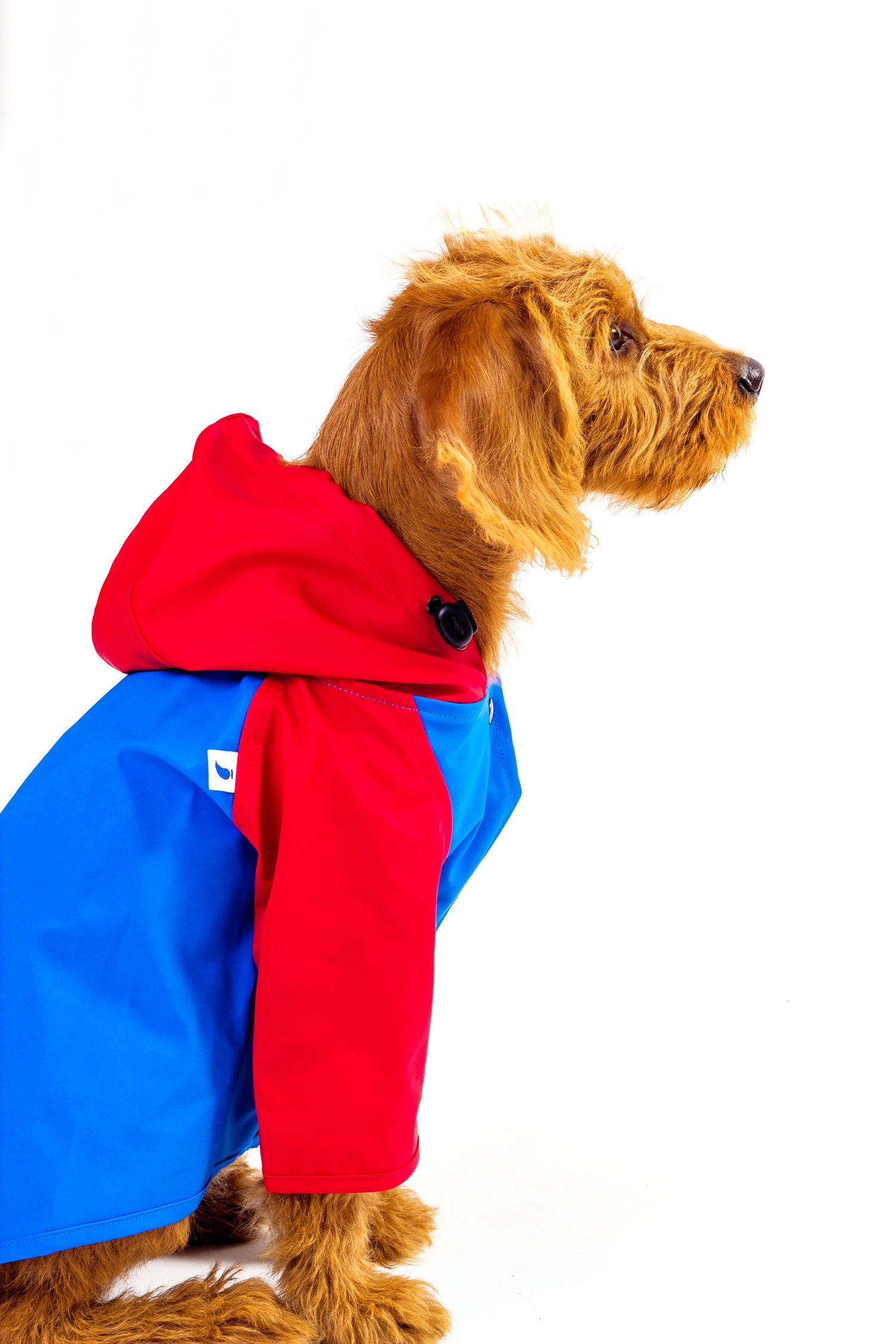 SARAH RAINCOAT GREEN PAW- BLUE BODY/RED SLEEVES