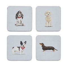 Curious Dogs Set of 4 Coasters