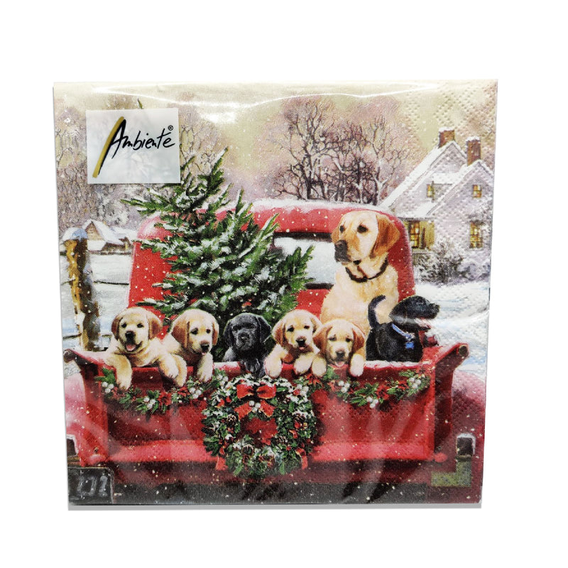 Ambiente Family Trip Lunch Napkins