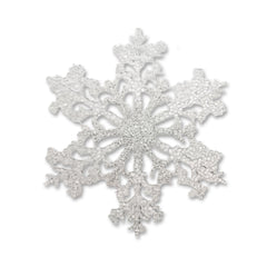 Winter Snowflake (small)