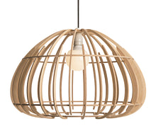 Load image into Gallery viewer, Protea Pendant Light