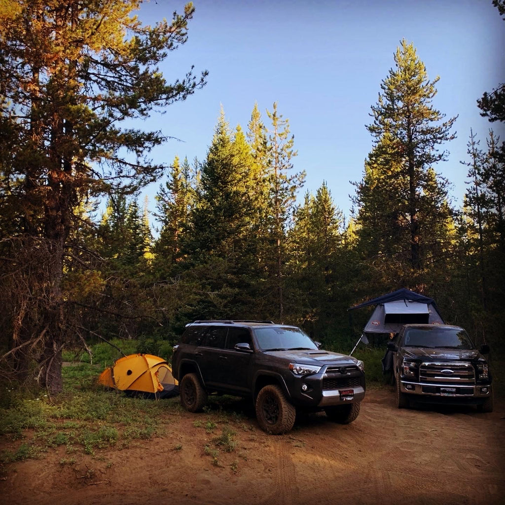 Toyota and Ford trucks camping