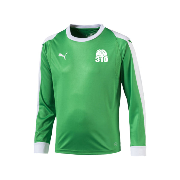 BF310 Goalkeeper Jersey Green - Youth/Adult