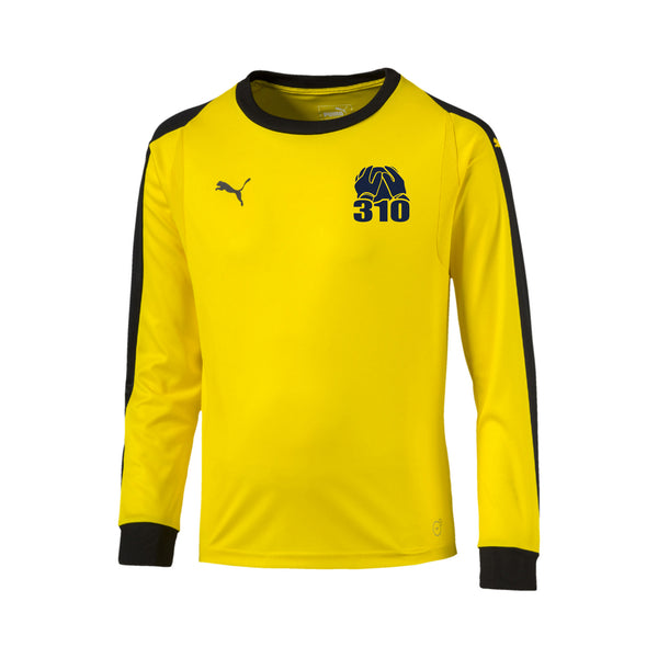 BF310 Goalkeeper Jersey Yellow - Youth/Adult