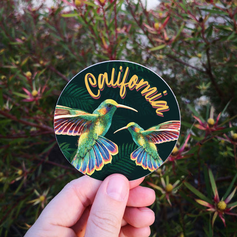 California Hummingbird Sticker