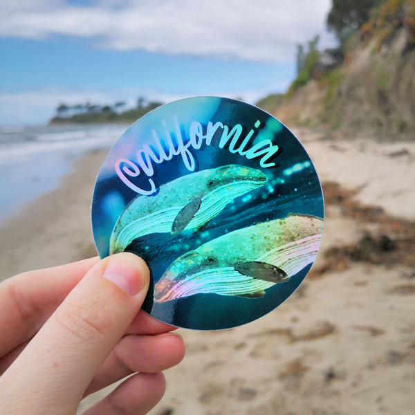 California Gray Whale Holographic Sticker