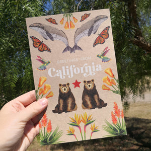 California Jumbo Postcard