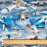 Antarctica Organic Cotton Jersey Fabric-Adam Ross Fabrics