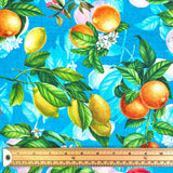 Fruits Cotton Canvas Fabric