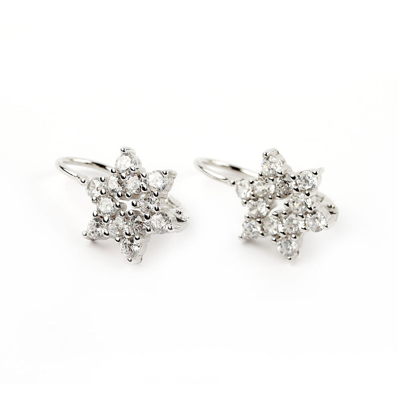Silver Earrings Shining Stars