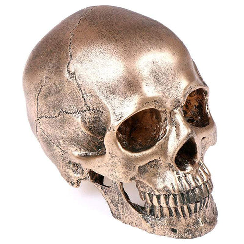 Bronze Skull Replica - All Hallow Evening