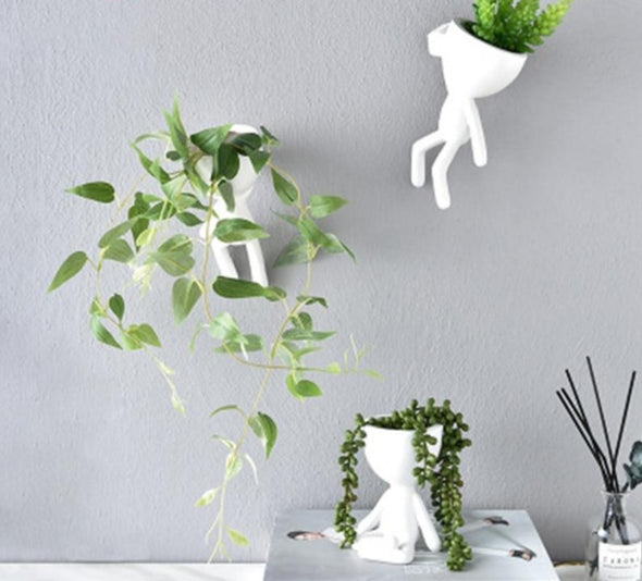 Find the perfect Hanging planter for you on Indoor Garden Nook
