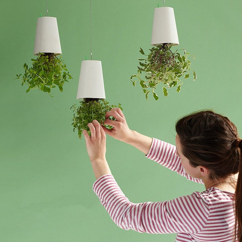 Self-Watering Inverted Plant Hanger