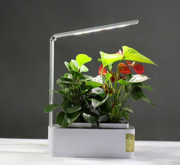 Find the perfect Grow light for you on Indoor Garden Nook