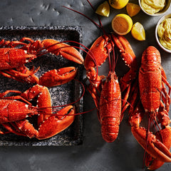 Cornish Lobster box for 4