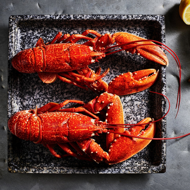 Cornish Lobster box for 2