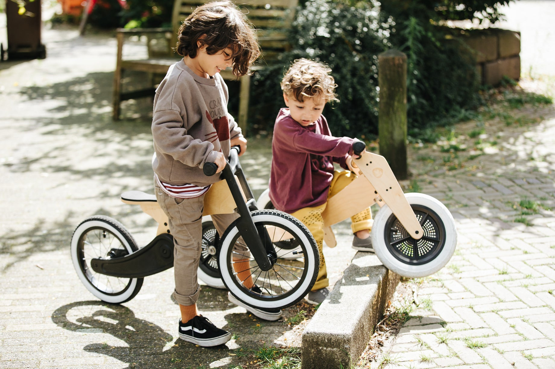 Draisienne and tricycle