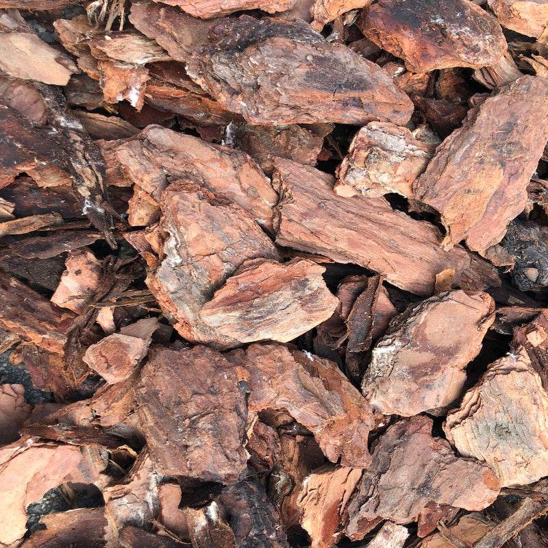 Pine Bark Nuggets, Large