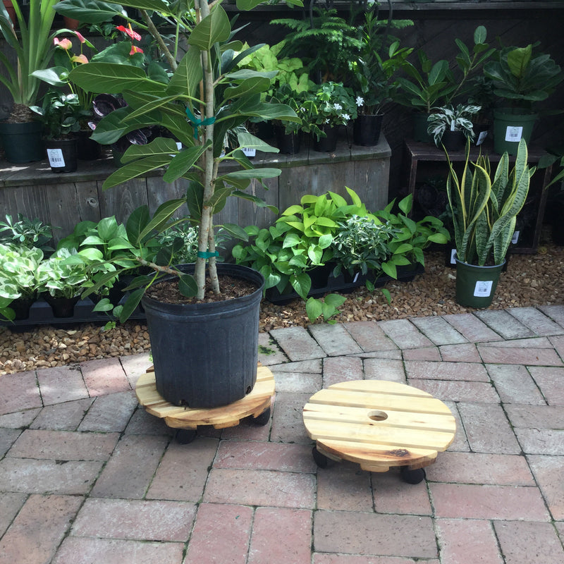 "12"" Round Plant Stand With Wheels"