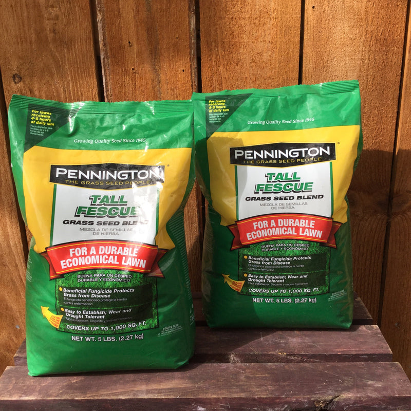 Pennington Tall Fescue Grass Seed