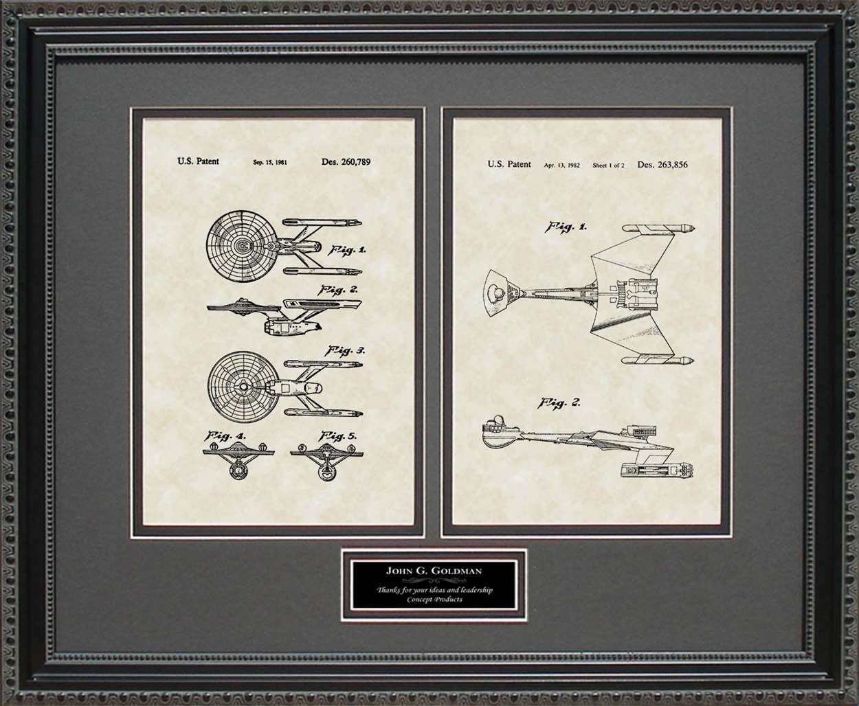 Personalized Star Trek Enterprise & Klingon Ship Patents, 16x20