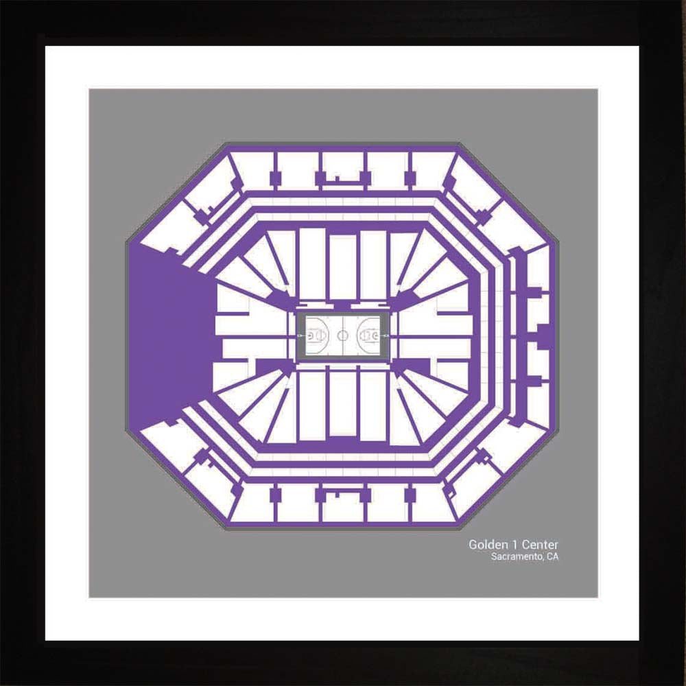 Golden 1  Center, Sacramento Kings, 16x16